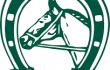 Oferta reklamowa dla właścicieli ogierów z licencją PZHK